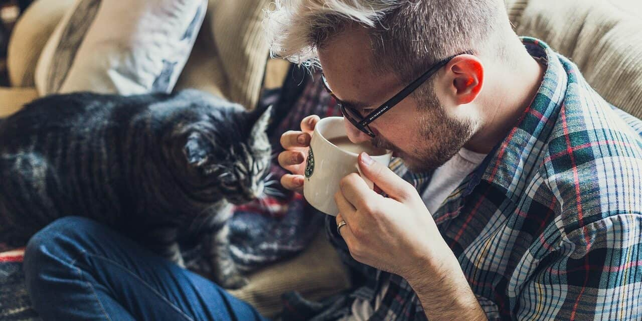 DO CATS GET PROTECTIVE OF THEIR OWNERS? DEVOTED PETS?