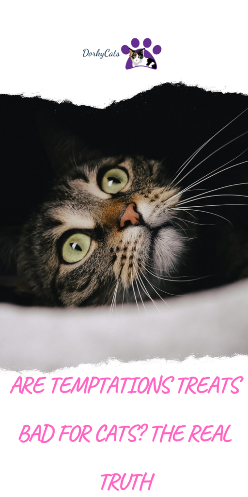 Are Temptations treats bad for cats, or are they actually safe?